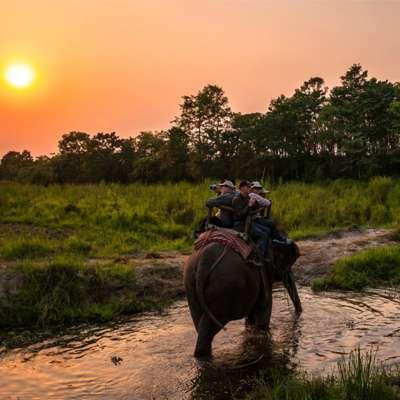 Wildlife Safari in Nepal